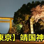 靖国神社の桜のライトアップはいつまで?花見の場所取りと混雑時間は?